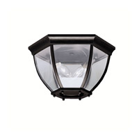 Signature 2 Light 12 inch Black Outdoor Flush Mount in Clear Glass