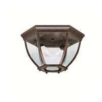 Signature 2 Light 12 inch Tannery Bronze Outdoor Flush Mount in Clear Glass