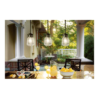 Kichler 49447AZ Lyndon 1 Light 6 inch Architectural Bronze Outdoor Hanging Pendant alternative photo thumbnail