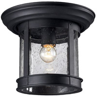 Aluminum Signature Outdoor Ceiling Lights