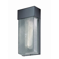 Lite Source Eldig 1 Light Wall Lamp in Black with Clear Shade LS-16855