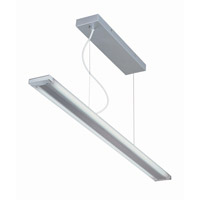 Lite Source Fabian 2 Light Pendant in Silver with Frost LS-19690SILV
