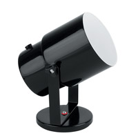 Lite Source Pin-up 1 Light CFL Wall Lamp in Black LSF-113BLK