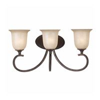 Series 1001 3 Light 22 inch Bronze Bath Wall Light