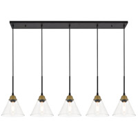 Living District LD4017D48BRB Histoire 5 Light 7 inch Brass and Black Pendant Ceiling Light