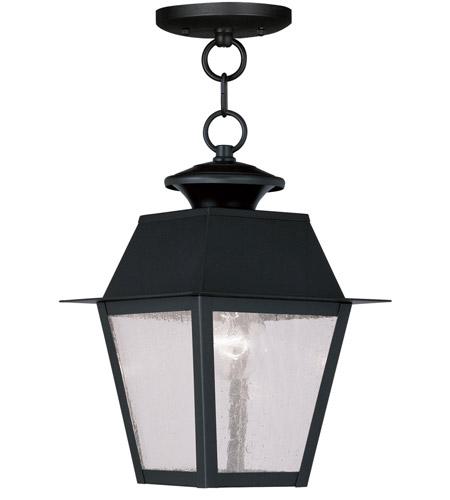 Livex Lighting Mansfield 1 Light Outdoor Hanging Lantern in Black 2164-04 photo