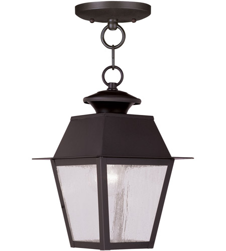 Livex Lighting Mansfield 1 Light Outdoor Hanging Lantern in Bronze 2164-07 photo