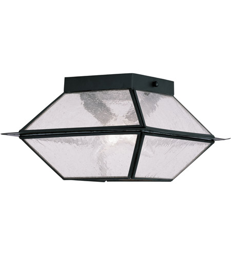Livex 2175-04 Mansfield 2 Light 9 inch Black Outdoor Ceiling Mount photo