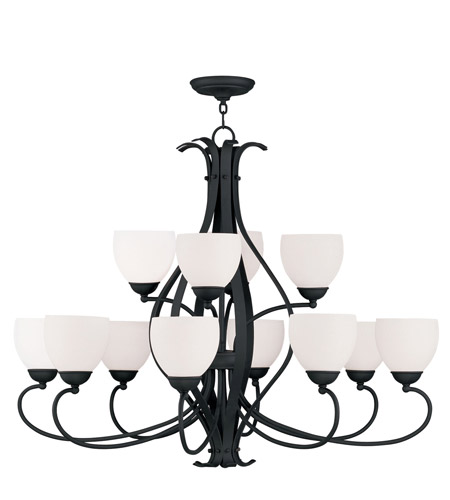 Livex Lighting Brookside 12 Light Chandelier in Black 4779-04 photo