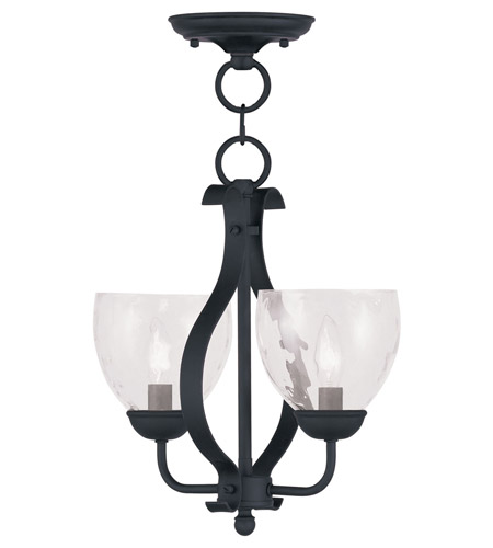 Livex Lighting Brookside 2 Light Pendant/Ceiling Mount in Black 4804-04 photo