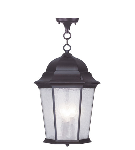 Livex 7569-07 Hamilton 3 Light 13 inch Bronze Outdoor Hanging Lantern in Clear Water photo