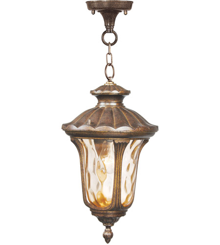 Livex Lighting Oxford 1 Light Outdoor Hanging Lantern in Moroccan Gold 7654-50 photo