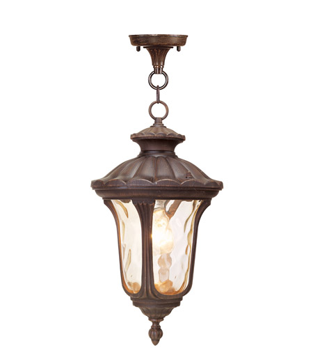 Livex Lighting Oxford 1 Light Outdoor Hanging Lantern in Imperial Bronze 7654-58 photo