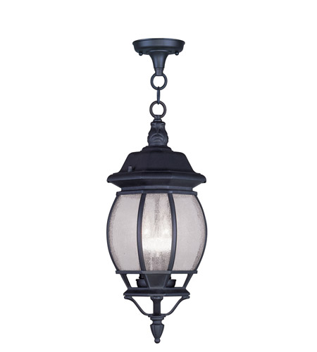 Livex Lighting Frontenac 3 Light Outdoor Hanging Lantern in Black 7908-04 photo
