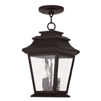 Livex Hathaway 2 Light Outdoor Chain Hang Lantern  in Bronze 20233-07