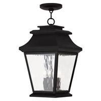 Livex 20237-04 Hathaway 3 Light 10 inch Black Outdoor Chain Hang Lantern
