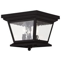 Livex 20239-04 Hathaway 3 Light 10 inch Black Outdoor Ceiling Mount
