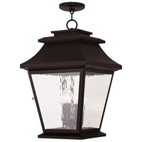 Livex Hathaway 4 Light Outdoor Chain Hang Lantern  in Bronze 20243-07