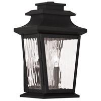 Livex 20256-04 Hathaway 2 Light 13 inch Black Outdoor Wall Lantern