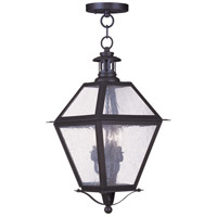 Livex Lighting Waldwick 3 Light Outdoor Hanging Lantern in Bronze 2046-07