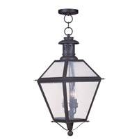Livex Lighting Waldwick 3 Light Outdoor Hanging Lantern in Bronze 2049-07