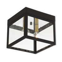 Nyack 2 Light 8 inch Bronze Outdoor Ceiling Mount