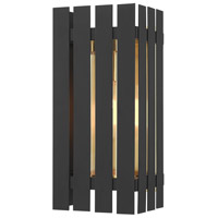 Livex 20752-04 Greenwich 1 Light 13 inch Black with Satin Brass Accents Outdoor Wall Lantern