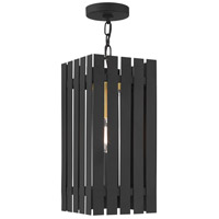 Livex 20757-04 Greenwich 1 Light 8 inch Black with Satin Brass Accents Outdoor Pendant Lantern
