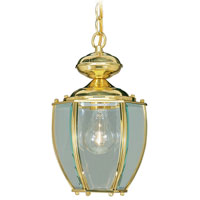 Livex Lighting Outdoor Basics 1 Light Outdoor Hanging Lantern in Polished Brass 2113-02