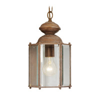 Livex Lighting Outdoor Basics 1 Light Outdoor Hanging Lantern in Weathered Brick 2116-18