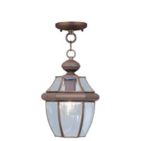 Livex Lighting Monterey 1 Light Outdoor Hanging Lantern in Imperial Bronze 2152-58