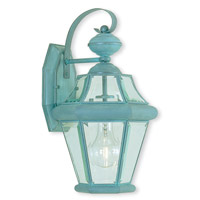 Limited 1 Light 15 inch Verdigris Outdoor Wall Light