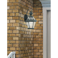 Georgetown 1 Light 15 inch Charcoal Wall Lantern