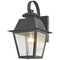 Livex 2162-61 Mansfield 1 Light 13 inch Charcoal Outdoor Wall Lantern alternative photo thumbnail