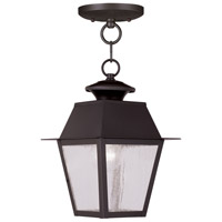 Livex Lighting Mansfield 1 Light Outdoor Hanging Lantern in Bronze 2164-07
