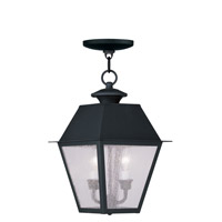 Livex Lighting Mansfield 2 Light Outdoor Hanging Lantern in Black 2167-04 photo thumbnail