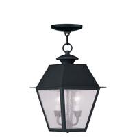 Livex 2167-04 Mansfield 2 Light 9 inch Black Outdoor Hanging Lantern