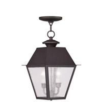 Livex 2167-07 Mansfield 2 Light 9 inch Bronze Outdoor Hanging Lantern