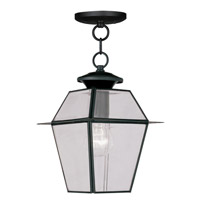 Livex 2183-04 Westover 1 Light 8 inch Black Outdoor Hanging Lantern photo thumbnail