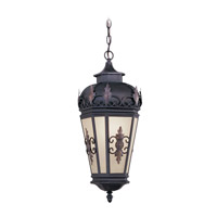 Livex 2195-07 Berkshire 1 Light 10 inch Bronze Outdoor Hanging Lantern