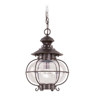 Harbor 1 Light 11 inch Bronze Outdoor Hanging Lantern