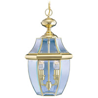 Livex Lighting Monterey 2 Light Outdoor Hanging Lantern in Polished Brass 2255-02