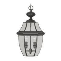 Livex Lighting Monterey 2 Light Outdoor Hanging Lantern in Black 2255-04