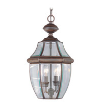 Livex Lighting Monterey 2 Light Outdoor Hanging Lantern in Imperial Bronze 2255-58