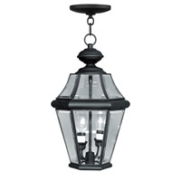 Livex Lighting Georgetown 2 Light Outdoor Hanging Lantern in Black 2265-04