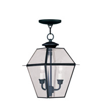 Livex 2285-04 Westover 2 Light 9 inch Black Outdoor Hanging Lantern