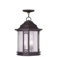 Livex Lighting Tahoe 3 Light Outdoor Hanging Lantern in Bronze 2315-07