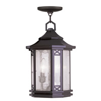 Livex Lighting Tahoe 2 Light Outdoor Hanging Lantern in Bronze 2317-07