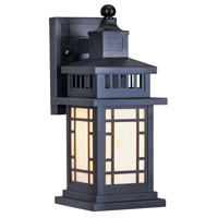 Mirror Lake 1 Light 13 inch Bronze Outdoor Wall Lantern