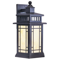 Mirror Lake 1 Light 21 inch Bronze Outdoor Wall Lantern